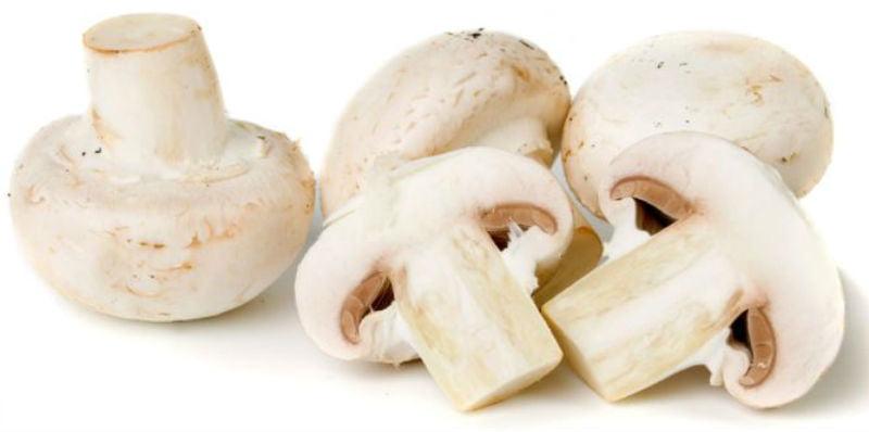 Tartar de setas y hongos